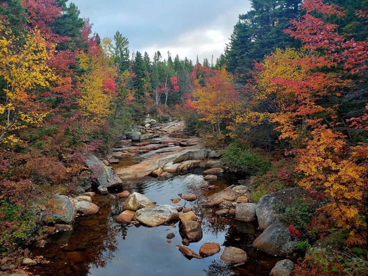 Fall Hiking in The White Mountains with Haley